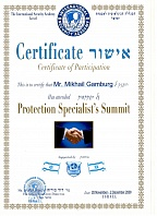 Certificate of Participation Mr. Mikhail Gamburg 28 November - 2 December 2008